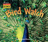 Listen-Read-Think Science: Bird Watch